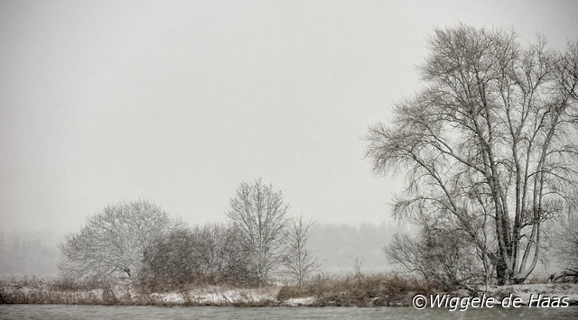 landschap in sneeuwbui